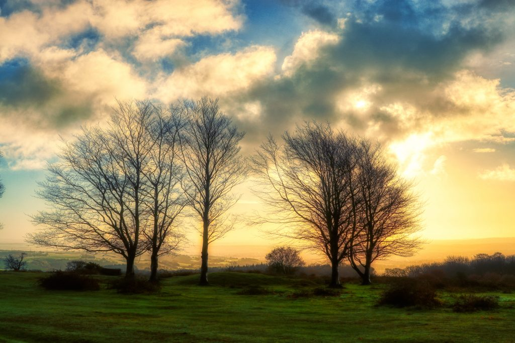 seven sisters sunset. seven trees