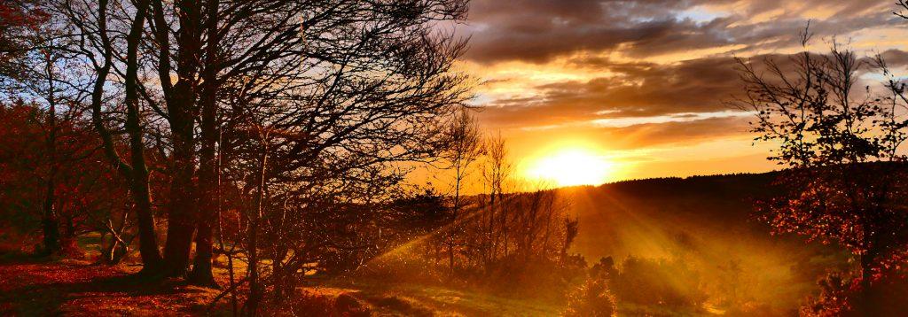 quantock sunset