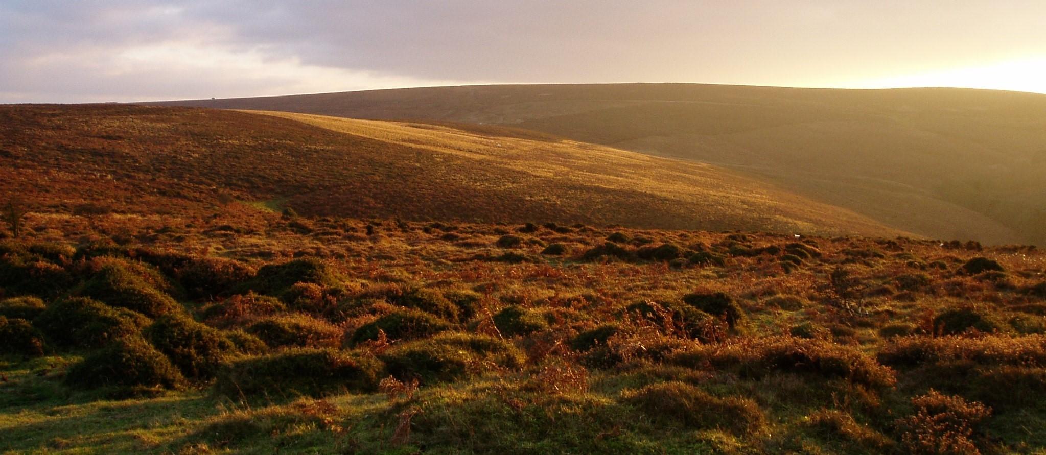 quantock hills sunset